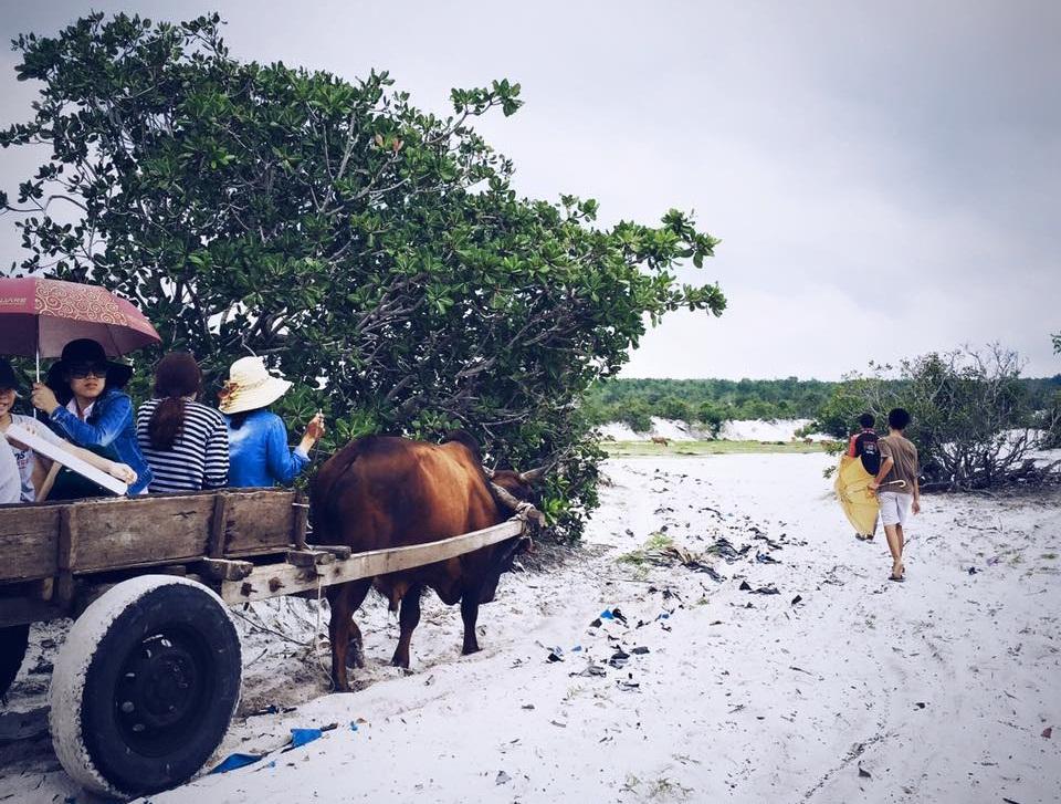 o%281%29 - HOT Bãi biển du lịch Lagi : Hoang sơ - Mộc mạc - Yên bình như công chúa bị lãng quên