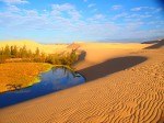 Mui Ne Sand Dunes Day Tour From Saigon