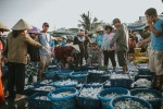 Tour Experience Mui Ne Fish Market & Fishing Village